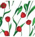 tulip pattern big vector image