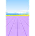 lavender field vector image