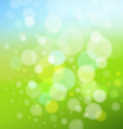 summer and spring background vector image