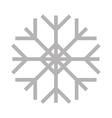snowflake icon image vector image