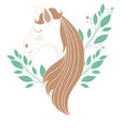 light colors of female horse face with floral vector image