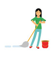 beautiful young brunette woman housewife cleaning vector image