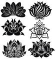 Set of decorative lotuses vector image