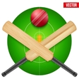 cricket ball and wooden vector image