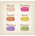assortment of colorful macaroons with different vector image vector image