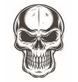 Isolated skull on white background vector image