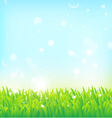 light spring field background vector image