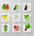 nfographic food vegetables flat lay idea hipster vector image