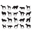 Set of dogs silhouettes-2 vector image