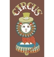 drawing of circus theme - lion in a hat with vector image