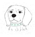 cute dog with a blue collar vector image