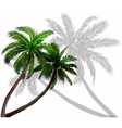 palm trees with green leaves vector image