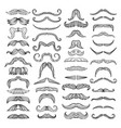 retro style of hairs mustache of men vector image
