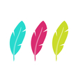 Set Colorful Feathers Isolated on White Background vector image