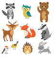 Cute forest animals vector image vector image
