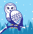 owl in the winter season vector image