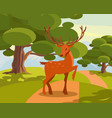 spotted deer with branched horns wild animal vector image