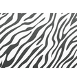 Backgrounds zebra skin vector image