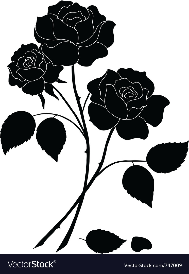 Flowers rose silhouette vector