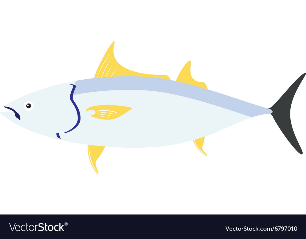 Sea fish tuna vector
