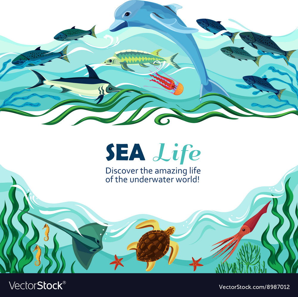 Sea underwater life cartoon vector