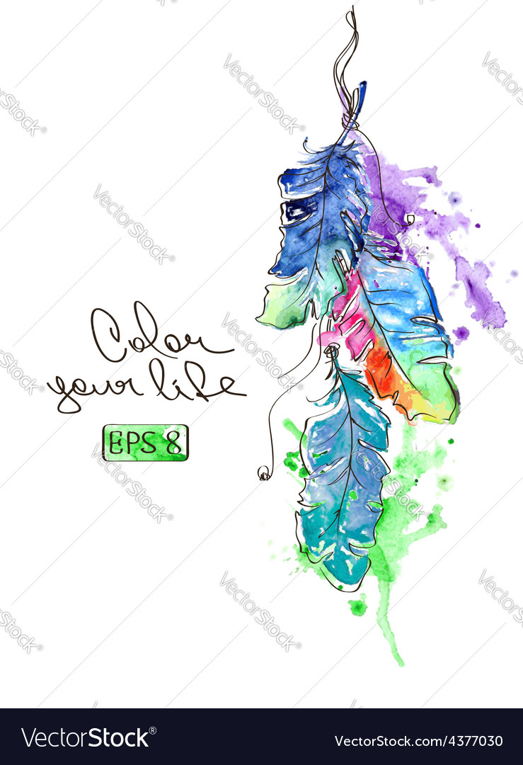 With watercolor feathers vector