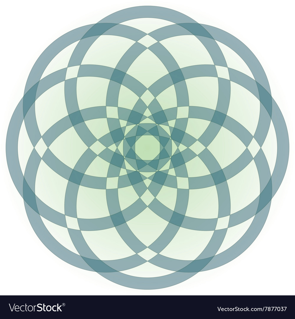 Flower made of circles vector