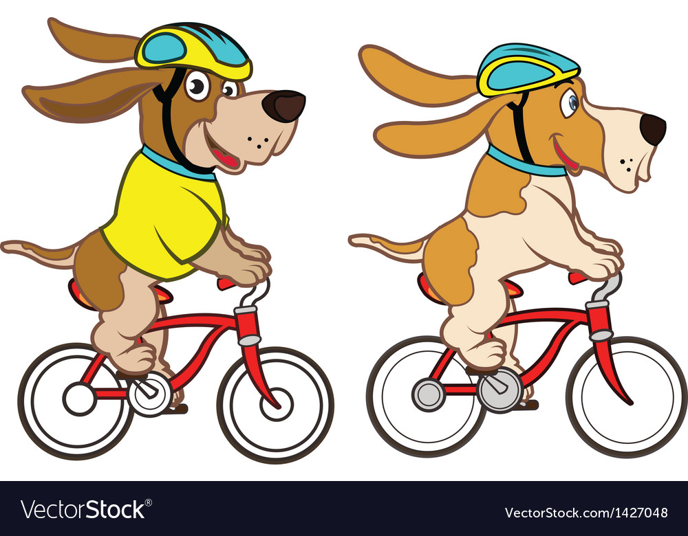 Dog riding bicycle vector