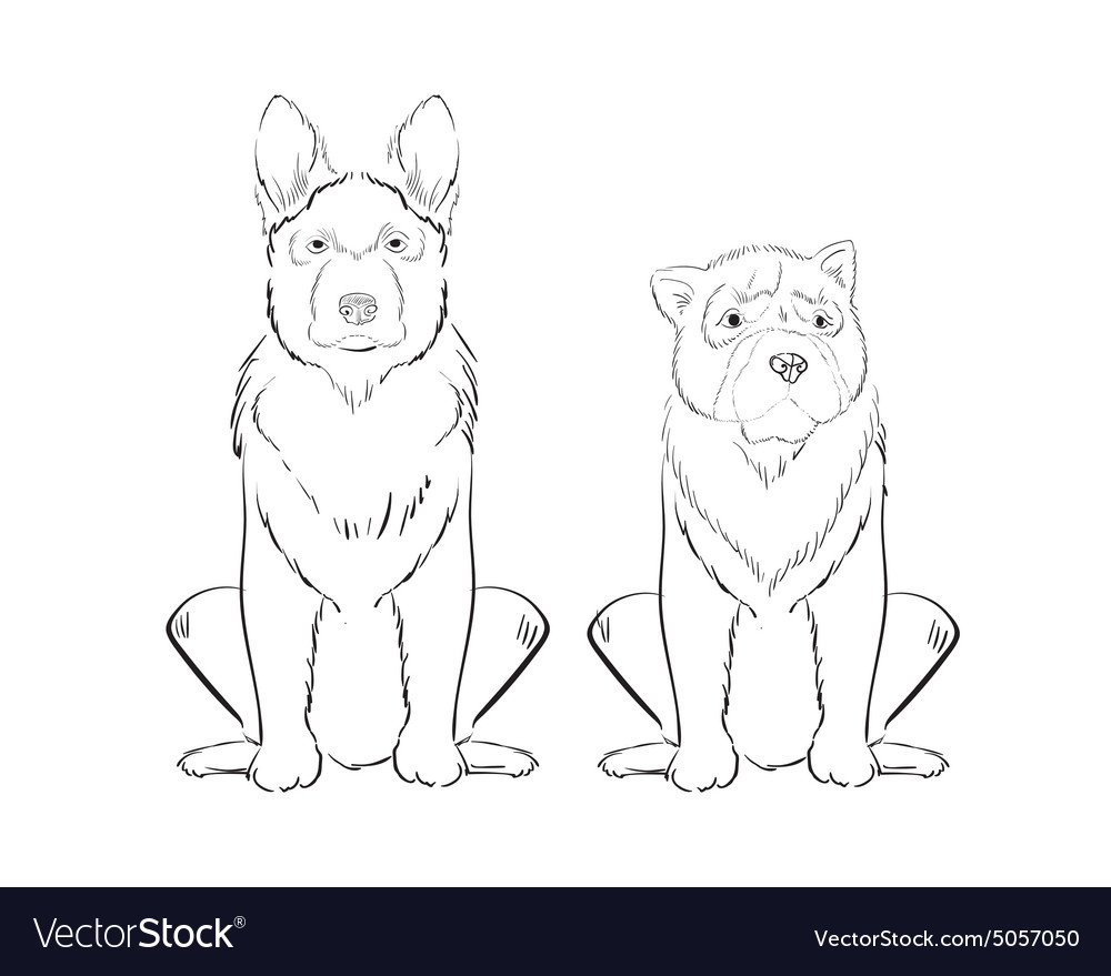 Hand drawn dogs vector