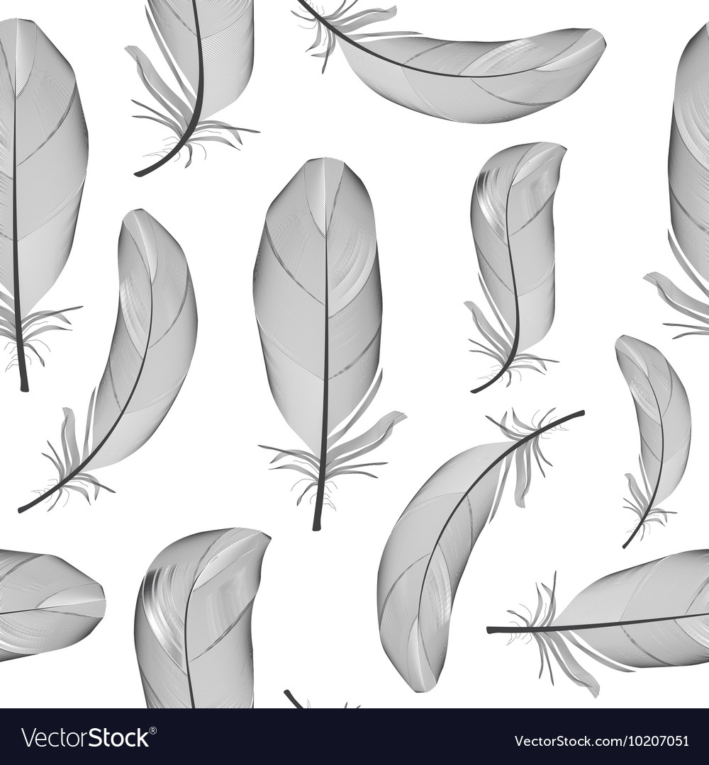Bird feather hand drawn seamless pattern vector