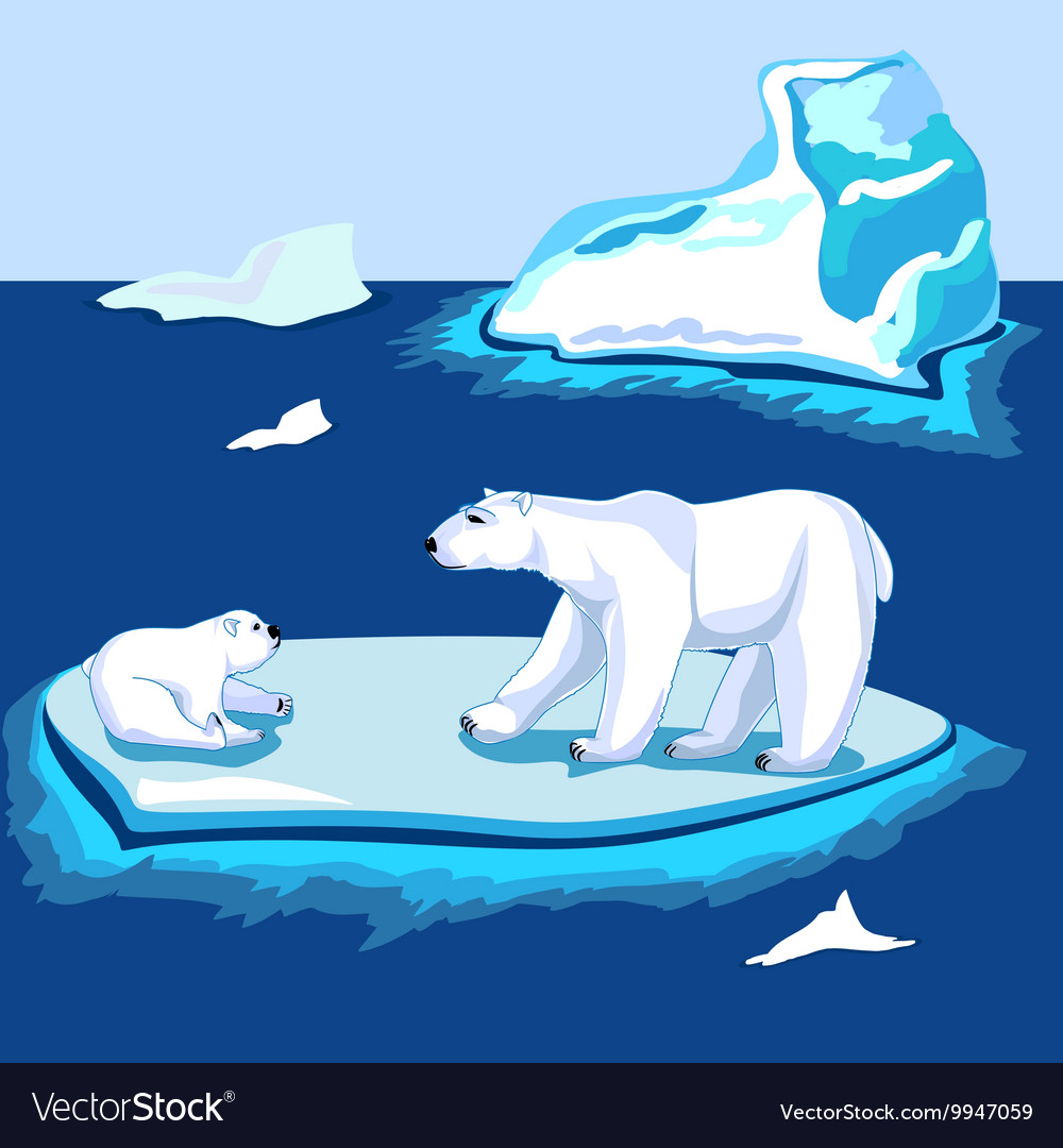 Polar bears on the ice near the iceberg vector