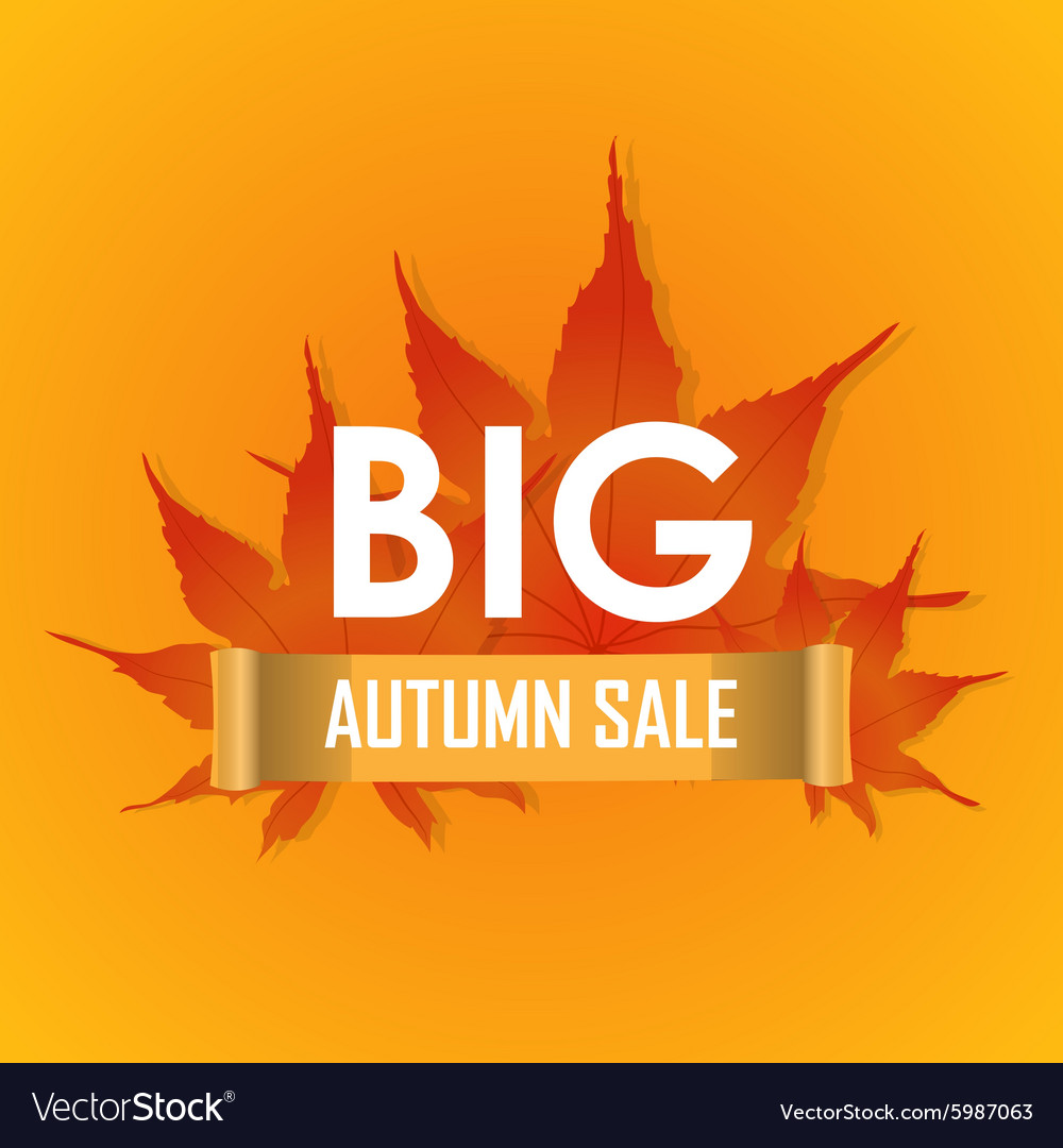 Big autumn sale poster promotion banner vector