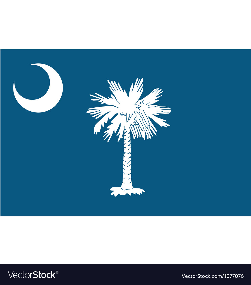 South carolinian state flag vector