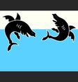 Shark vector image
