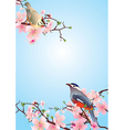 birds on the blossoming cherry detailedvector vector image