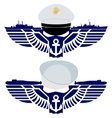 The icons of the US Navy vector image vector image