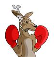 boxing kangaroo vector image