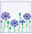 Flower border of cornflowers vector image vector image