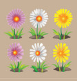 summer spring flower collection set vector image