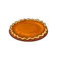 hand drawn pumpkin pie thanksgiving symbol food vector image