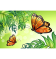 A design with butterflies and plants vector image vector image