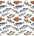 Seamless pattern of sketch style sea fish vector image