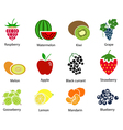 Set of Fruit Icons With Title vector image