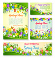 spring flower greeting card and banner template vector image