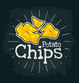 potato chips flat with vector image