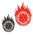 Handball vector image