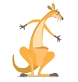 funny wondering kangaroo vector image