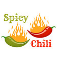 red and green chili peppers vector image