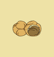 choux pastry cream puff vector image