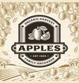 retro apples label on harvest landscape vector image